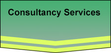 General Consultancy Services